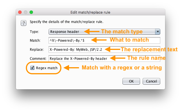 How To Write Burp Suite Match and Replace Rules — Matthew Setter